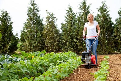 Aérer la pelouse, émousser, kit émousseur, Nano 20 R